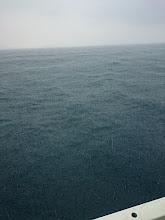 Photo: 土砂降りです! ・・・10分ぐらいで止みました。