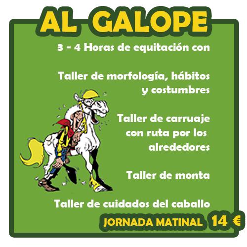 Programa de equitación
