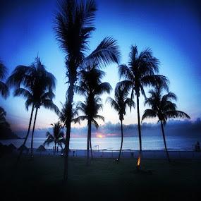#sunrise #beach #tree #webstagram #instacanvas #ink361 #picoftheday #photooftheday #igersoftheday #colour #bluesky by Ediyal Djamalus - Instagram & Mobile Instagram