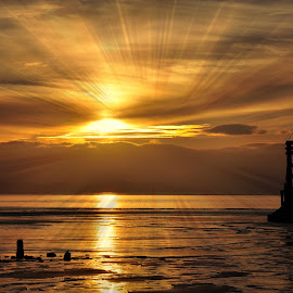 rays by Susan Davies - Landscapes Sunsets & Sunrises ( another place, pipeline, sunset, crosby, silhouettes, anthony gormley., rays,  )