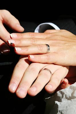 Matrimonio...benedetto da qualcuno di Surrogate