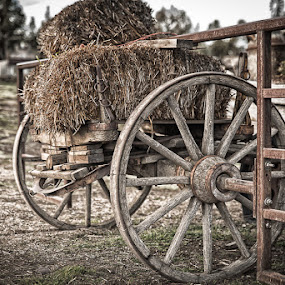 Hay Wagon Gate by Earl Heister - Artistic Objects Antiques (  )