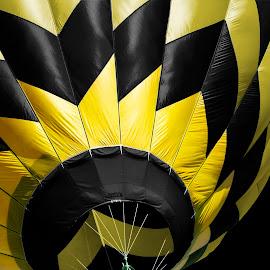 by Vicki Switala Riley - Transportation Other ( hot air balloon, balloon, strip, balloon festival, black background, yellow, black, diagonal,  )