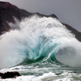 Sea Fan by James Bokovoy - Landscapes Waterscapes ( crashing waves, kauai, na pali coast, wave, north shore, kodachrome 200, ocean, surf, nikon f4, saltwater, hawaii )