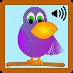 Bird Sound Icon