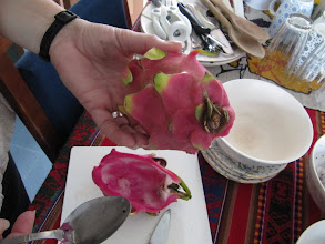 Photo: Day 201 – Dragon Fruit