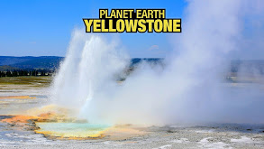 Planet Earth: Yellowstone thumbnail