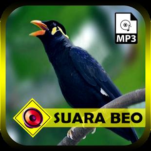 Suara Burung Beo Bisa Bicara - náhled