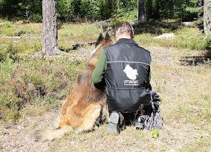 Photo: Rolle och Laios blivande bevakningshunden inför ett spår