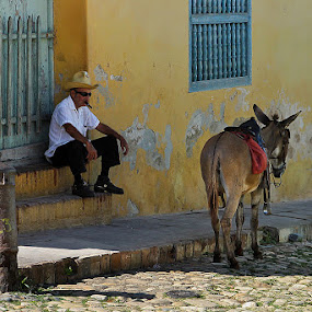 Me, my donkey and cigar by Dejan Dajković - People Street & Candids ( cigar, donkey, street, trinidad, cuba )