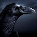Золотой Ворон