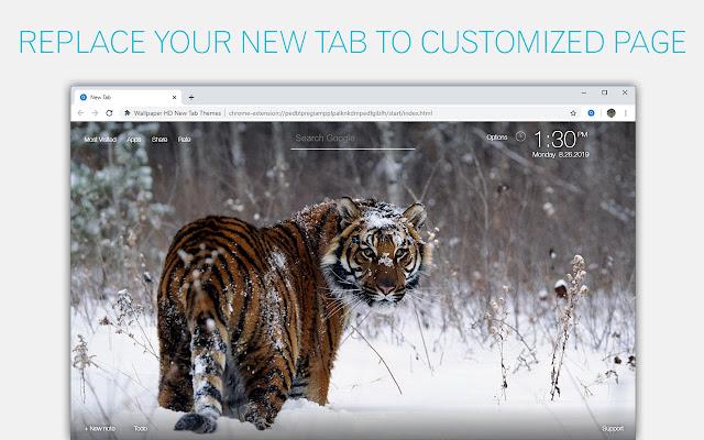 Lions Tigers Cheetahs Custom Wild Cats NewTab