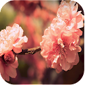 Lovely Nature Live Wallpapers icon