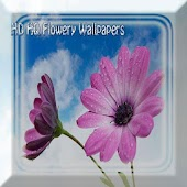 HD HQ Flowery Wallpapers