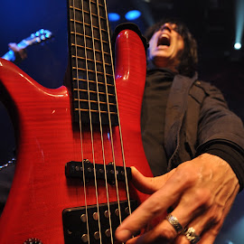 Bass player by Michal Grulich - Uncategorized All Uncategorized ( hand, music, concert, heavy metal, string, finger, bass guitar, gig,  )