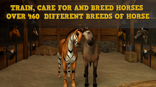 Horse Academy 3D 49.2 screenshots 4