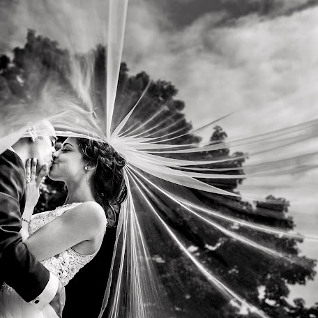 Wedding photographer Sean Leblanc (seanleblanc). Photo of 10.07.2017