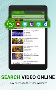 Dolphin Video - Flash Player For Android- screenshot thumbnail