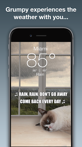 Grumpy Cat Weather 4.9.8 Apk for Android 2