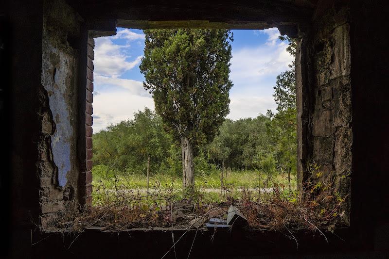 Uno sguardo dalla finestra.... di anapeas
