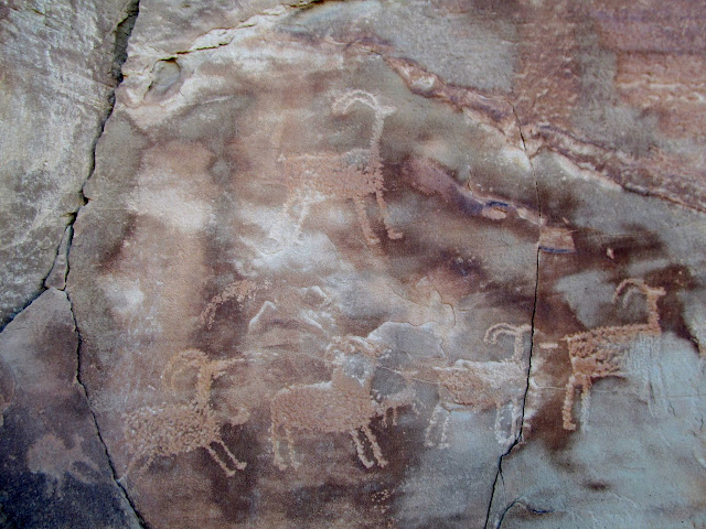 Several sheep petroglyphs