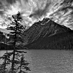 Edith Cavell by Dan Warkentin - Landscapes Mountains & Hills ( clouds, water, b&w, mountain, tree )