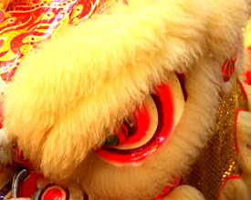 Photo: Year 2 Day 107 -   Dancing Lion #3