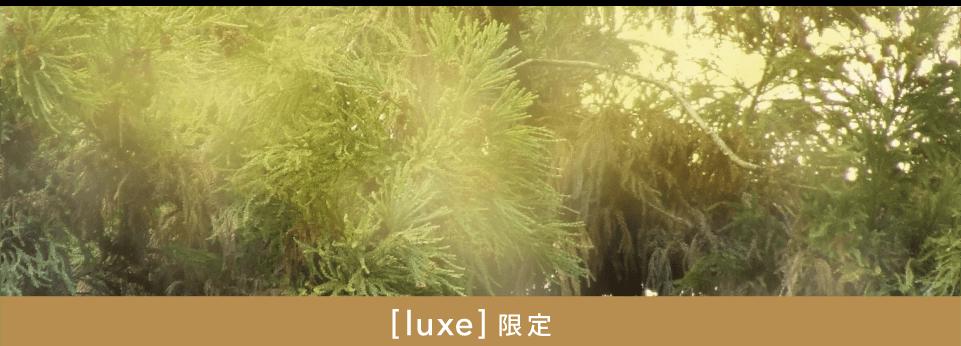 リネット保管の花粉ガードの内容