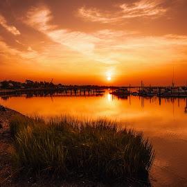 Good Morning by Linda Karlin - Landscapes Sunsets & Sunrises ( sunrise, clouds, landscape, summer,  )
