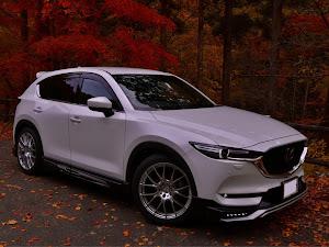 CX-5 KF2P XD Exclusive Mode/4WD/6EC-ATのカスタム事例画像 TSUCCIさんの2020年11月28日07:36の投稿