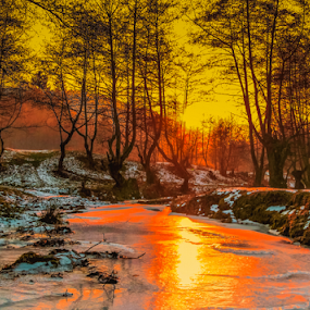 Cold sunset by Roberto Sorin - Landscapes Sunsets & Sunrises ( water, sopinel, forest, romania, sun, sorin, winter, red, tree, cold, nature, color, sunset, ice, outdoor, snow, opreanu, sibiu, light,  )