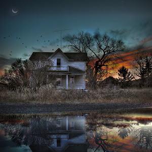 Colins House Last Reflection.jpg
