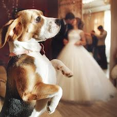 Wedding photographer Ekaterina Terzi (Terzi). Photo of 20.02.2017
