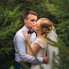Wedding photographer Alisa Zenkina (inwonderland). Photo of 07.12.2016