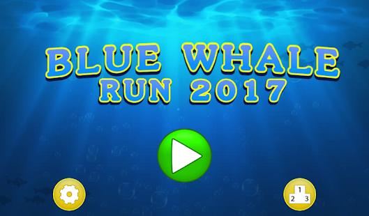 Blue Whale Run 2017 - náhled