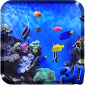 Aquarium Live Video Wallpaper