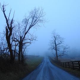 Morning..Mist by Charlotte Burnett - Landscapes Prairies, Meadows & Fields