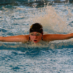 Checking the Competition by John Roberts - Sports & Fitness Swimming