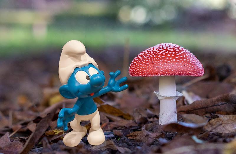 Che bel fungo!!! di Aktarus