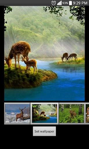 Deer  HD Wallpapers 1.2 screenshots 3