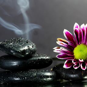 by Dipali S - Artistic Objects Still Life ( purple, www.dipalis.com, alternative, relaxation, health, dipali s, smoke, zen, medicine, stones, flower, black, spa,  )