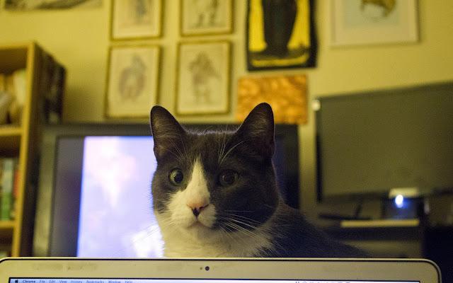 Hangouts Helper