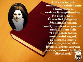 """Photo: Lisieuxi Szent Teréz. Ágnes anya """"sárga füzete"""", amelybe Szent Teréz utolsó szavait jegyezte, CJ 15.5.3    =   UB 12-13"""