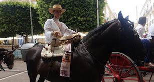 Desfile de caballos en  el paseo de Almería durante esta feria