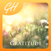 Mindfulness Meditation for Gratitude & Happiness