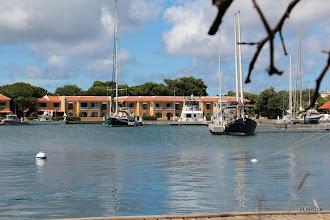 Photo: Veleros amarrados en Harbor Village Marina