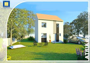 maison à Dammartin-en-Goële (77)