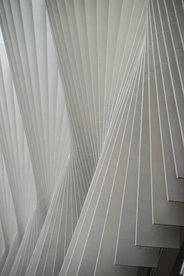 Calatrava in dettaglio di sarre 49