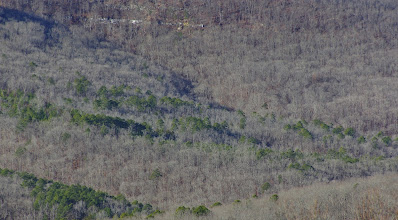 Photo: Upper Big Piney Valley from above Spradley Hollow