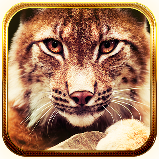 Lynx live wallpaper